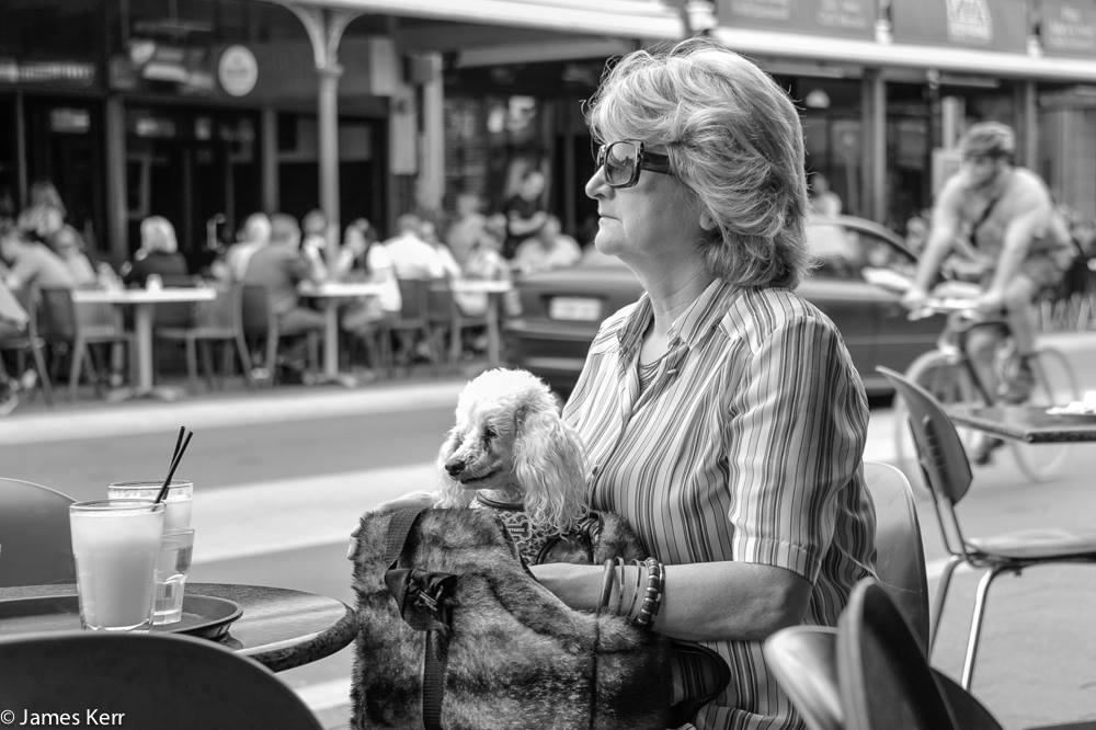 lady with dog in fremantle wa